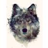 Wolf-Legacy