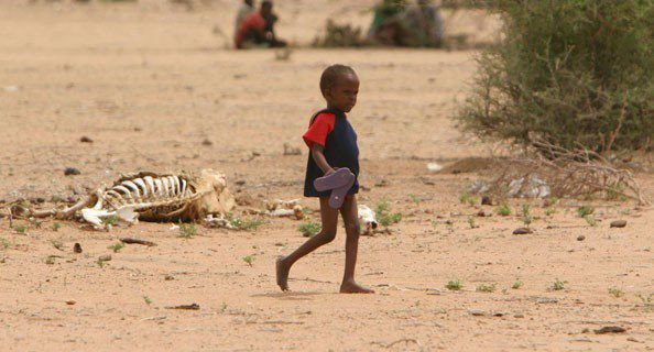 L'Epreuve Humanitaire