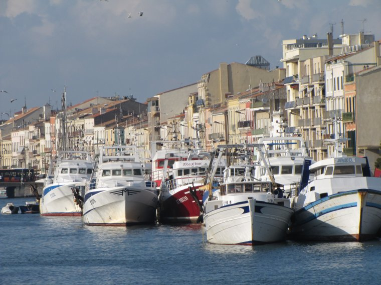 plan de sortie de flotte en méditerranée 2012