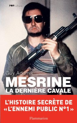 Mesrine ; La Derniere Cavale