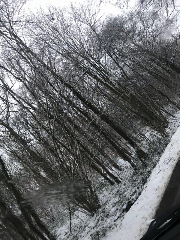 La neige ❄️❄️❄️❄️❄️