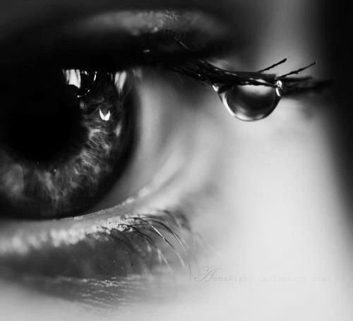 • Chapitre 1 : Ma vie est en noir et blanc.