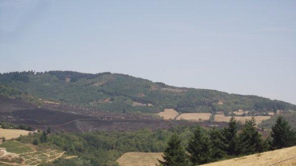 degatapresle feu de foret a Beaujeu le jeudi 06 aout