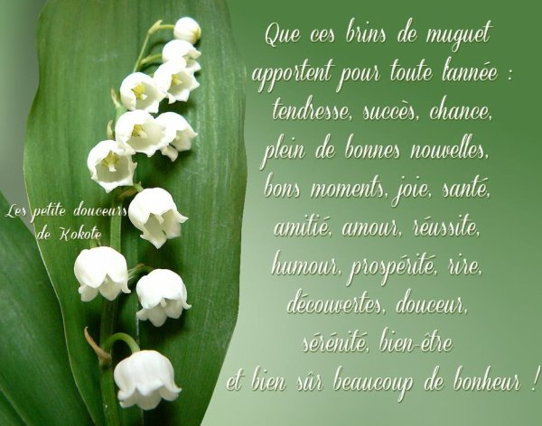 joyeux 1 Mai de bonheur dans votre vie , bisous doux ***