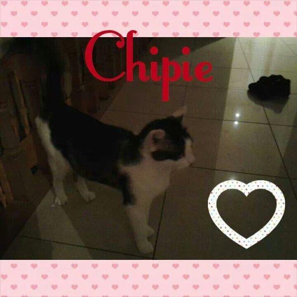 Ma chipie ♥