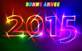Toute l'équipe ROINAKA vous souhaite à toutes et tous une bonne et heureuse année2015