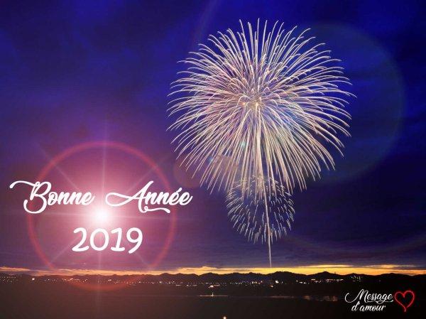 L'équipe Roinaka vous présente à vous tous ses meilleurs v½ux pour 2019!