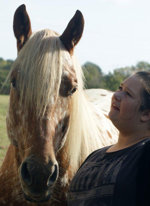 rosco étalon croisé appalossa et quater horse