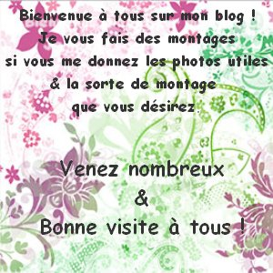 Blog de montages-lovelorie02