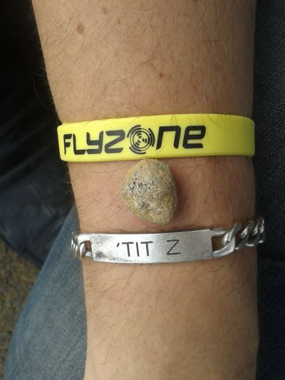 Flyzone (2)