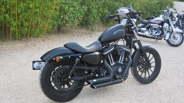 Harley Davidson iron 883 modifié