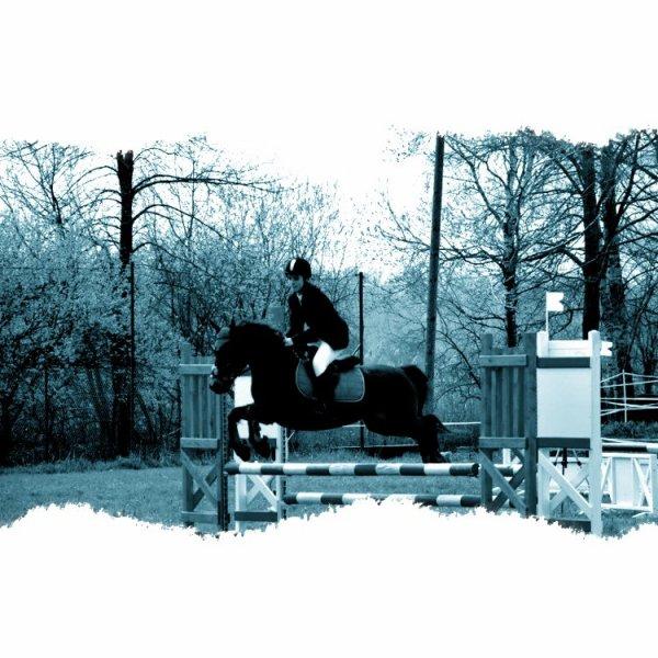 L'équitation est ma passion ツ ♥