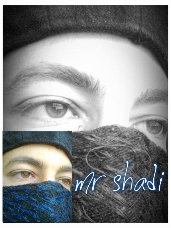 mr shadi