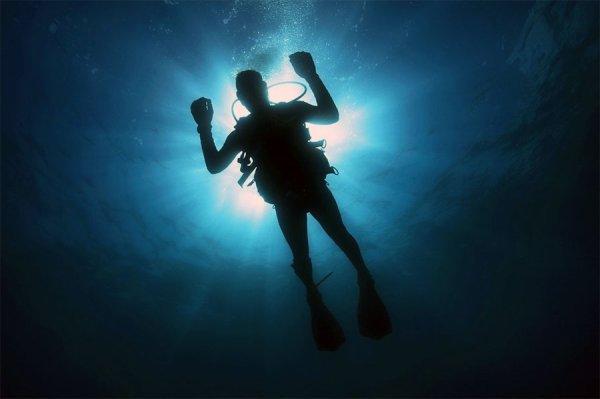 Les eaux magiques pour tous types de plongeurs en Guadeloupe
