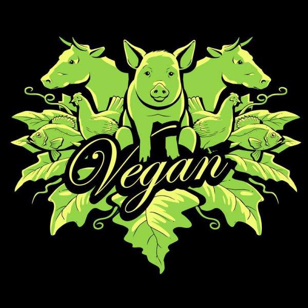 Affaire des steaks à la viande de cheval : devenez végétarien !