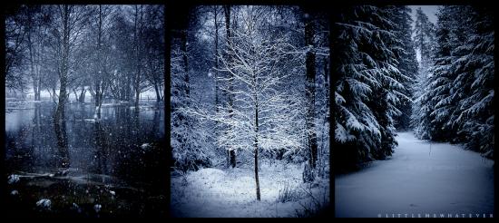 J'ai besoin de l'hiver. Car pendant que la nature se repose, l'esprit, lui, peut entrer en ébullition Jan Sevrak