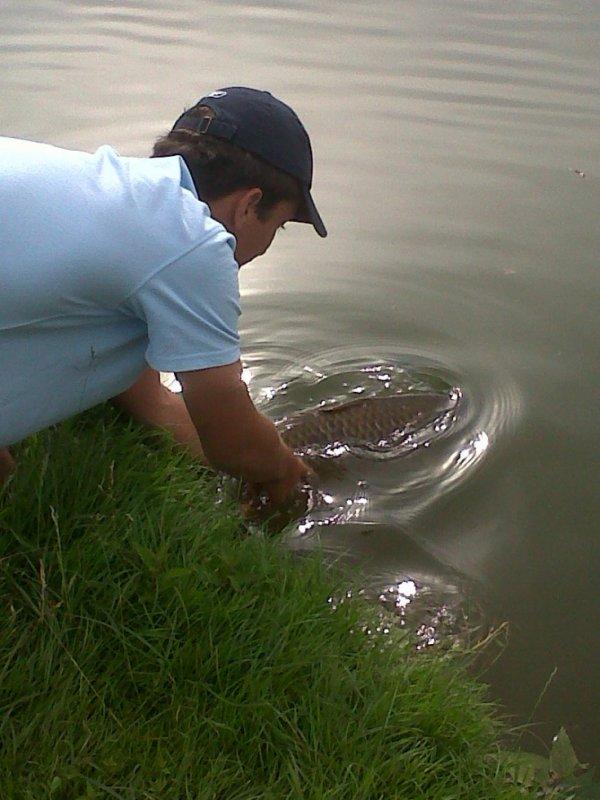 toujours en relachant le poisson