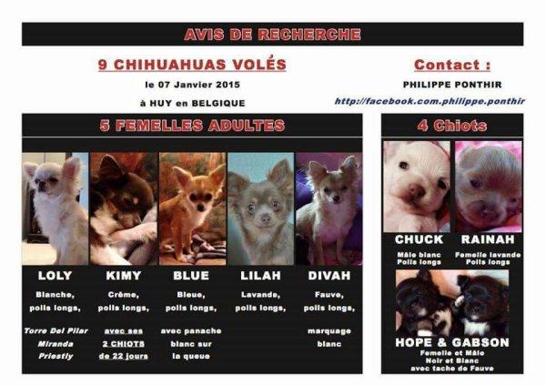 Partagez pour retrouver les chiens de Philippe Ponthir ! Merci