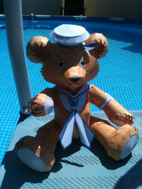 Teddy Bear marin