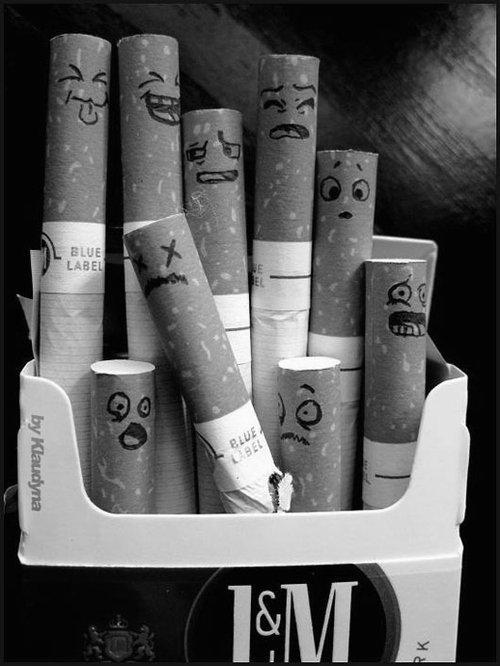 Fume avant que la vie ne te fume elle même..