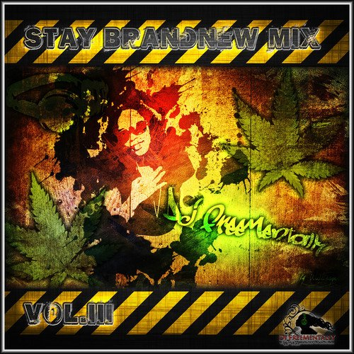 Stay Brandnew Mix vol 3 By DjLady Freementally