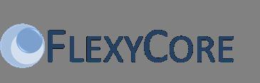 Business: Google se paye FlexyCore
