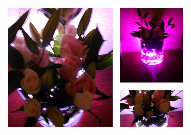 Quand les Fleurs jouent leurs stars