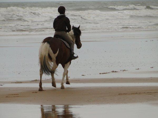La plage ..... !!!!!!!