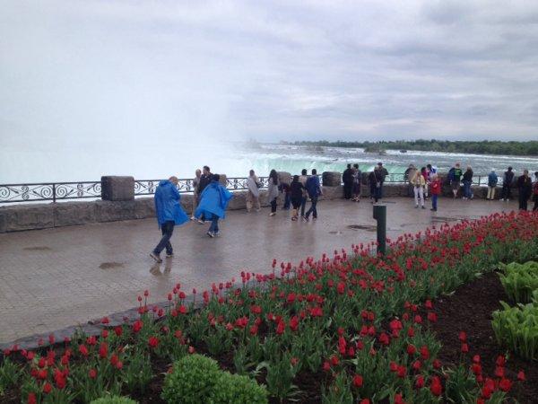 Toronto - Niagara Falls