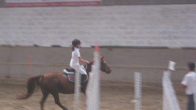 """"""" L'air du paradis est celui qui souffle entre les oreilles d'un cheval """" ♥"""