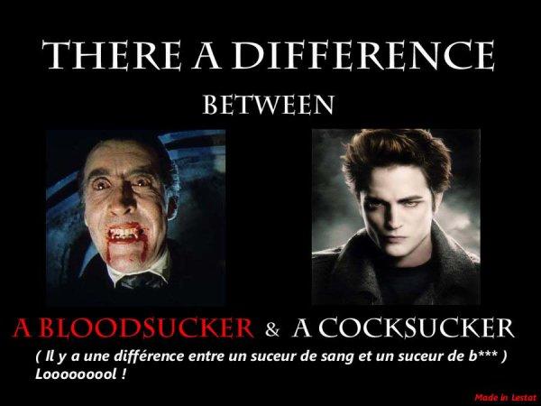 Une phrase très vrai sur twilight !
