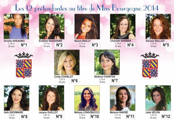 Candidates Miss Bourgogne 2014