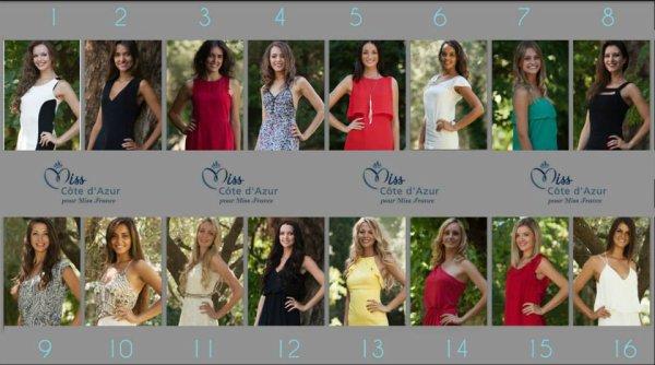 Candidates Miss Côte d'Azur 2014