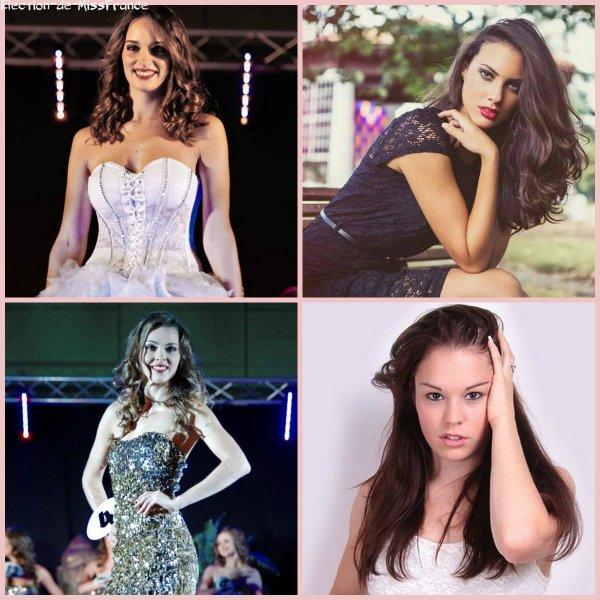Candidates Miss Aquitaine 2014