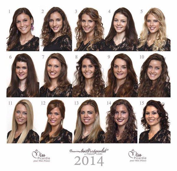 Candidates Miss Picardie 2014