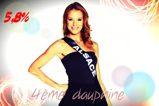 Election Miss France 2015 du blog