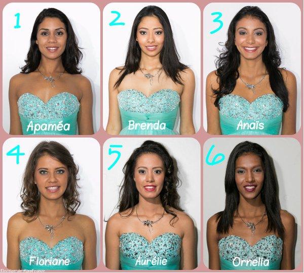 Candidates Miss Réunion 2015