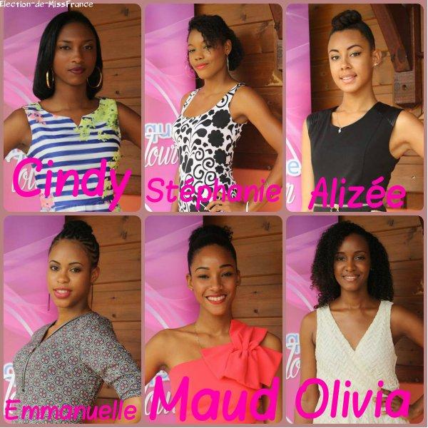 Candidates Miss Martinique 2015