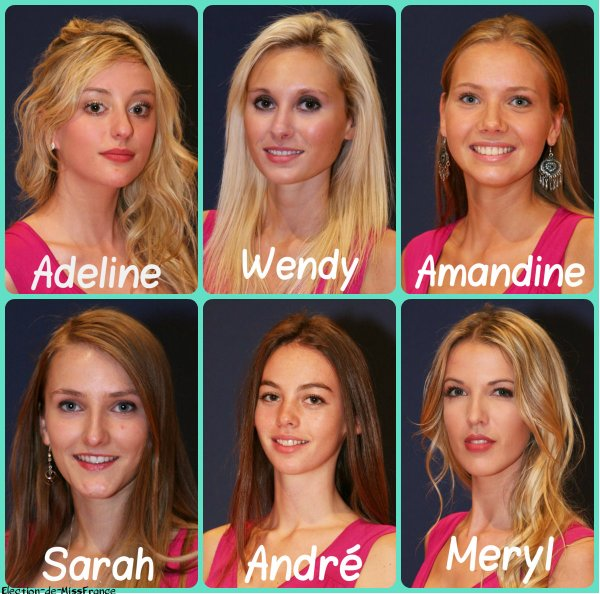 Candidates Miss Normandie 2015