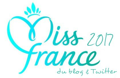 Election Miss France 2017 du Blog & Twitter