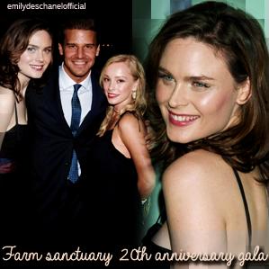 Sorties d'Emily en 2006 (suite 1)