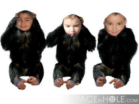 les trois rongeur met je les aime !!!!