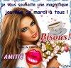 BONJOUR  MES   AMIS NOUS SOMMES LE MARDI 08..NOVEMBRE   206   C  EST  LA  ST  .GEOFFROY.....ET A LA ST  GEOFFROY...CASSONS ENSEMBLE  QUELQUES NOIX...