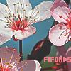 FiFonds