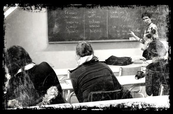 Les cours, les profs...