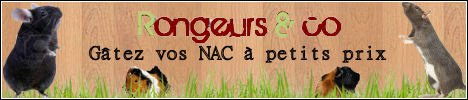 La boutique Rongeurs and Co