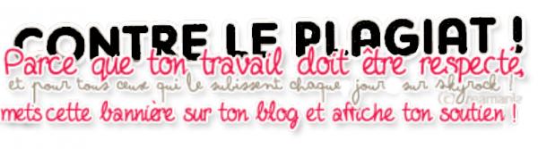 Contre le plagiat ! Affiche cette bannière sur ton blog !