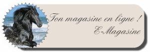 Bienvenue sur E-Magasine; un magasine équin