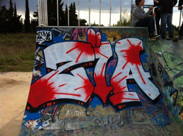 ZIA skate-park