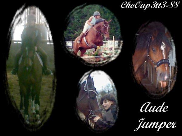 Le bonheur n'est pas forcement sur le dos d'un cheval...